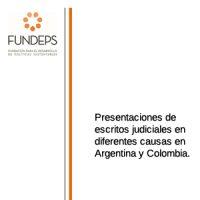 Presentaciones de escritos judiciales en diferentes causas en Argentina y Colombia.